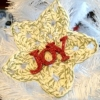 Crocheted Star Ornament